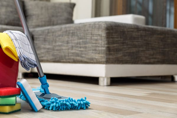Cleaning Supplies by Furniture